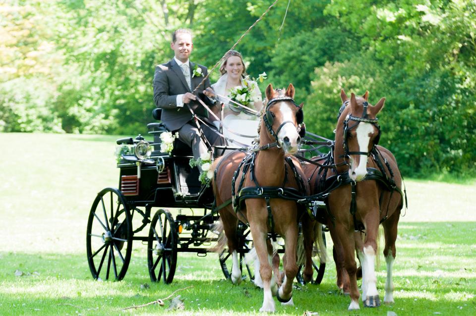 bruiloft met paarden -