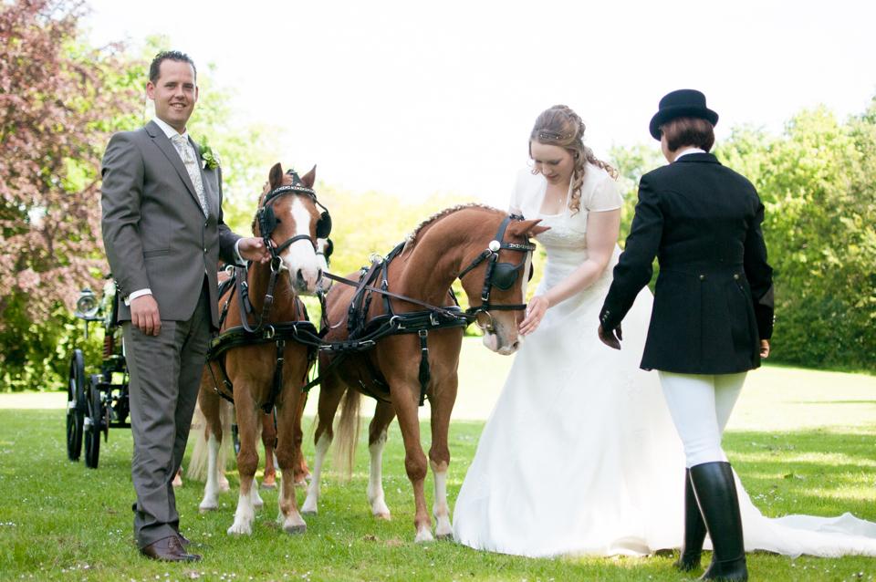 bruiloft met paarden -3896