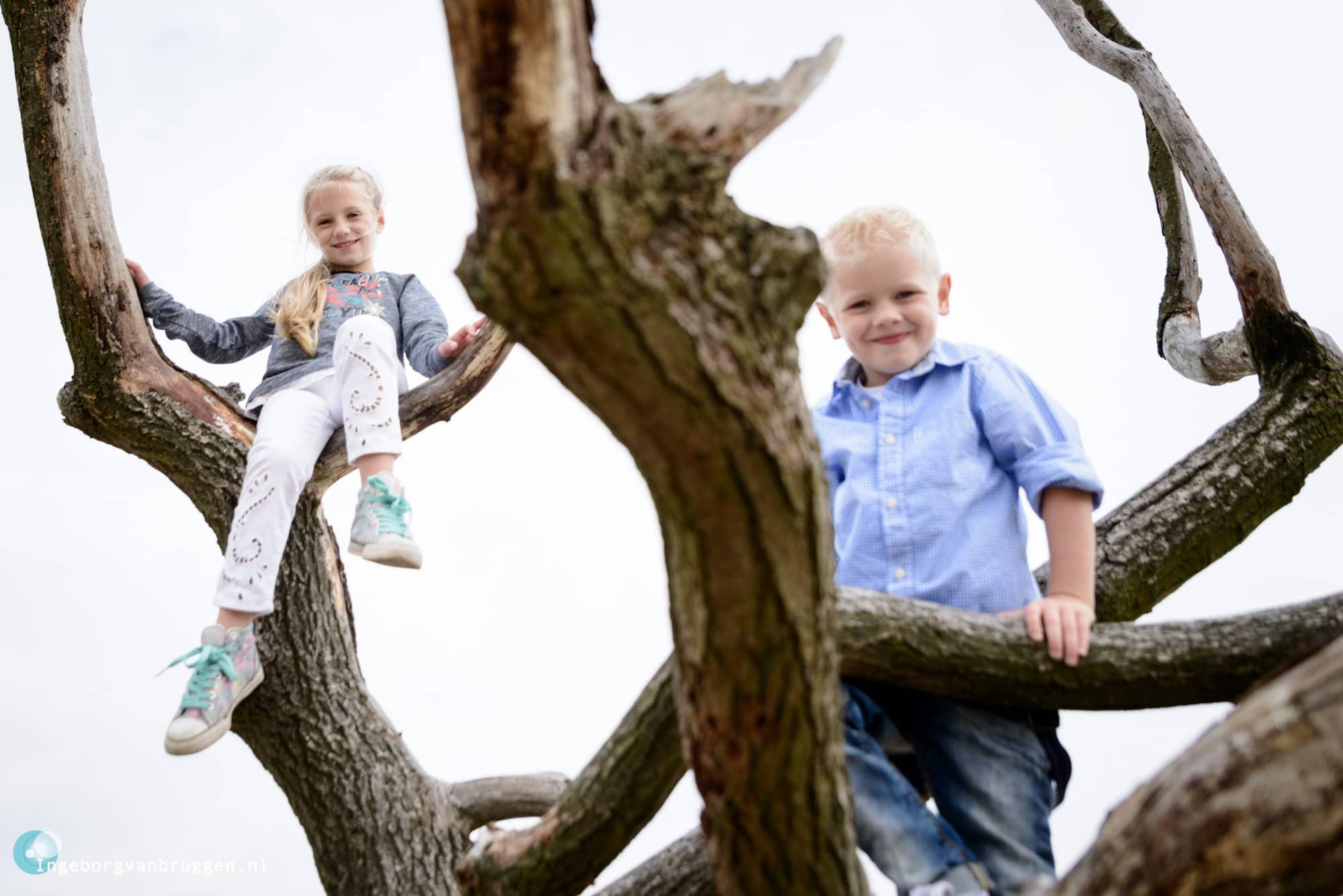 Familie-fotoshoot-Loonse-en-Drunense-Duinen