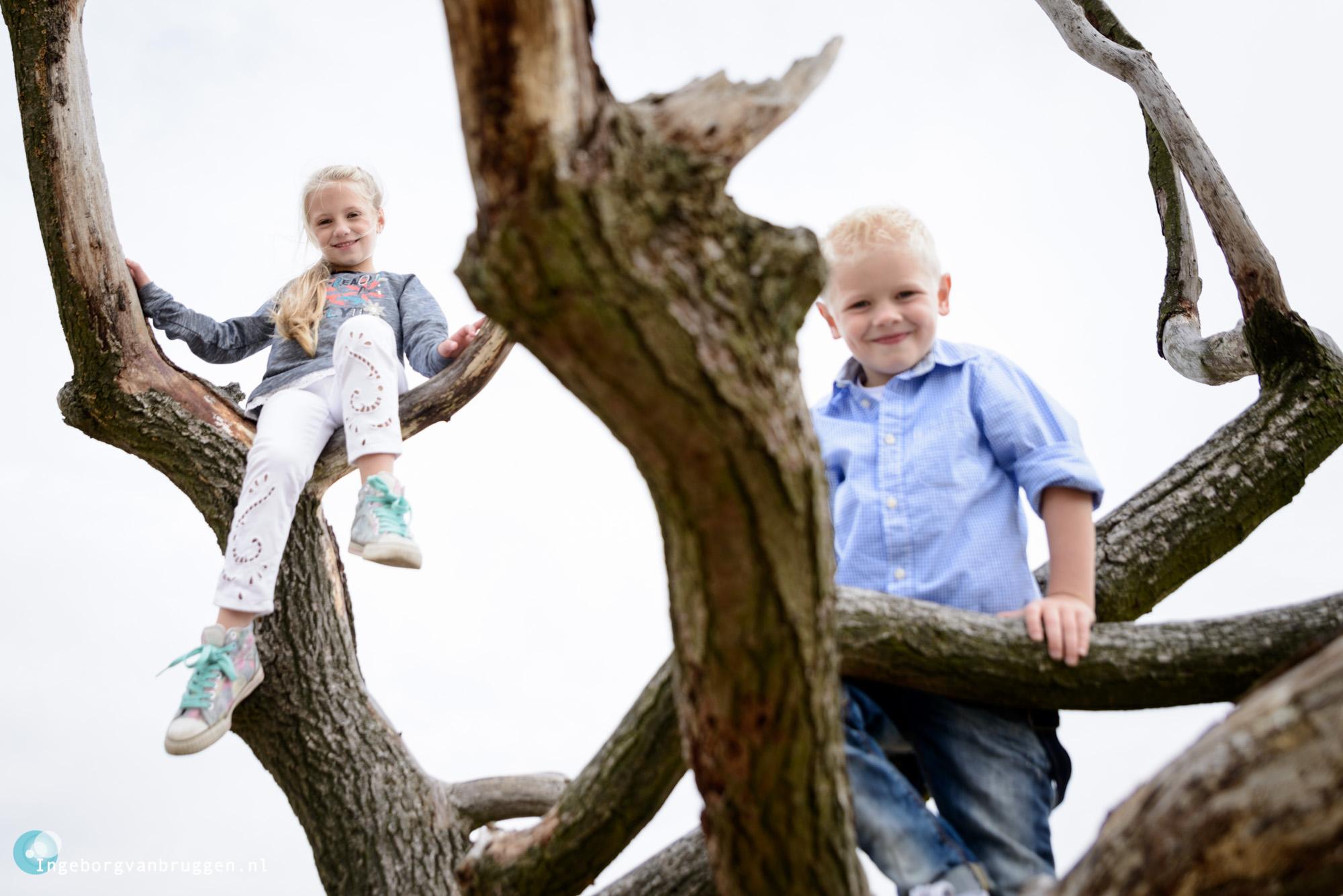 Familie fotoshoot Loonse en Drunense duinden
