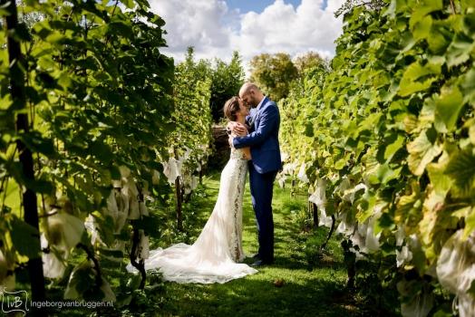 Bruiloft organiseren coronatijd
